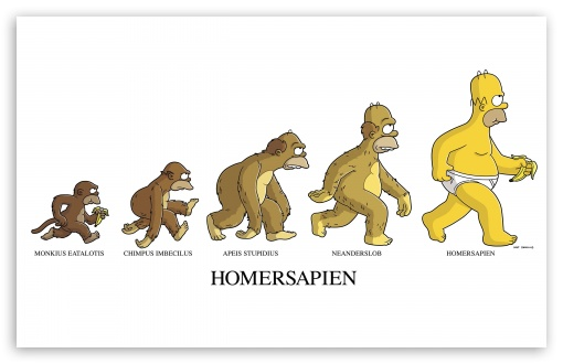 Download Homersapien UltraHD Wallpaper