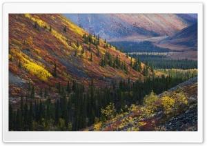 Mountain Slopes Autumn