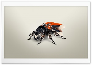 Biomechanics African Bee