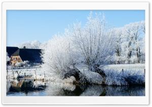 White Trees Along The Kromme...
