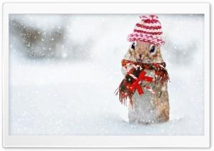 Cute Squirrel, Snowfall,...