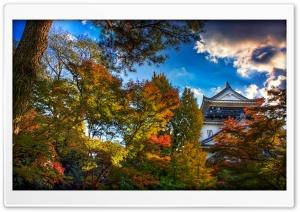 Japanese Castle, Autumn
