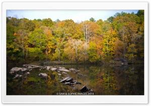 Sweetwater Creek Park