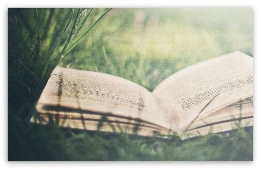 Download Open Book On Green Grass UltraHD Wallpaper
