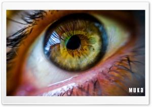 An Amazing Green Male Eye