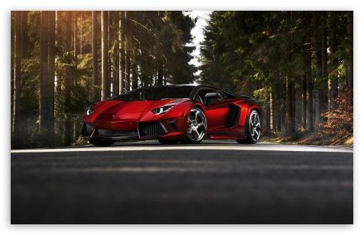 Download Lamborghini Aventador LP 700 4 Forest UltraHD Wallpaper