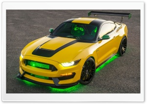 2016 Ford Ole Yeller Mustang...