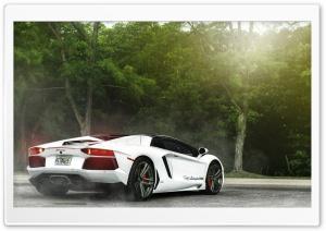 White Lamborghini Miami