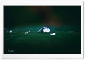 Beautiful Water Drops