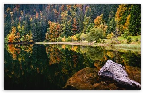 Download Amazing Autumn Lake View UltraHD Wallpaper