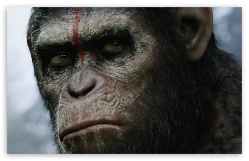 Download Dawn of the Planet of the Apes UltraHD Wallpaper