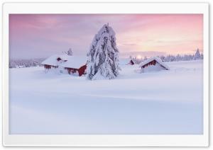 Morning Snow House