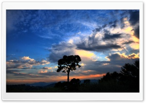 Nature Full HD Wallpaper...