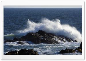 Ocean Shore Waves