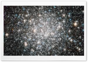 A Ten Billion Year Stellar Dance