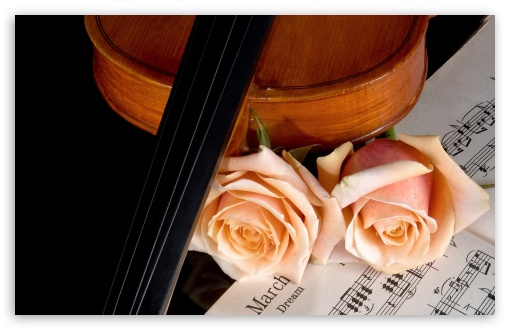 Download Violin And Peach Roses UltraHD Wallpaper