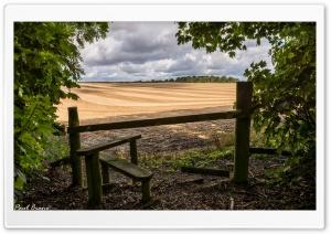Harvest view.