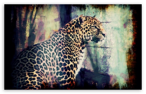 Download Lory Park Leopard UltraHD Wallpaper