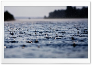 Rain Drops HD