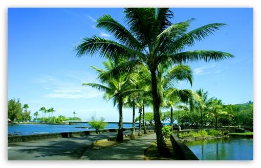 Download Hawaii UltraHD Wallpaper