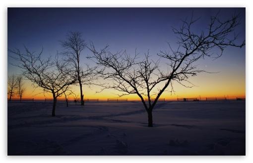 Download Winter Landscape UltraHD Wallpaper