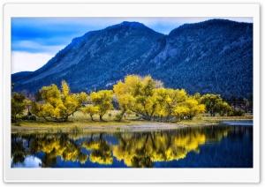 Autumn Yellow Trees...