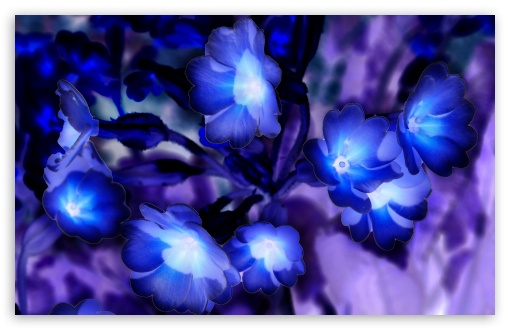 Download Glowing Flowers inspired by Avatar UltraHD Wallpaper