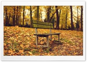 Autumn was here