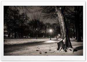 New York City, Central Park...