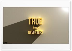 True Love Never...