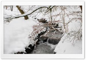 Forest Creek, Winter