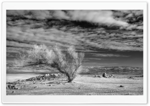 Folsom Drought
