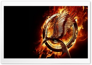 The Hunger Games Catching...