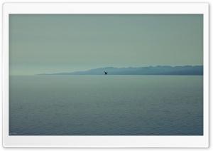Sea of Alone