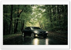 Lexus In The Rain