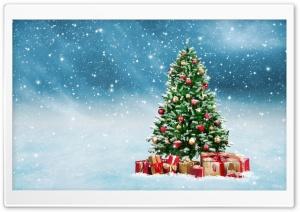 Beautiful Christmas Tree 2016