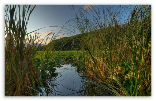 Download Jensen Lake at Lebanon Hills Regional Park,... UltraHD Wallpaper