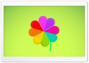 Four Leaf Clover Rainbow...