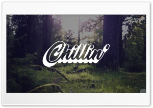 Chillin Forest
