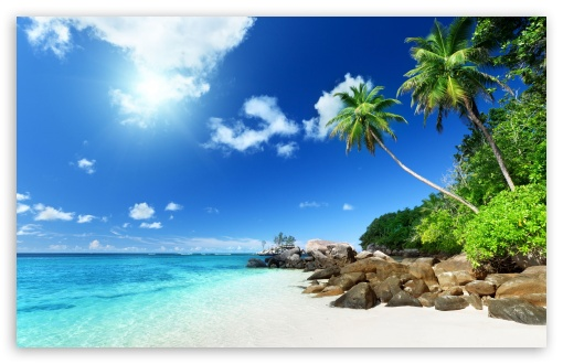 Download Paradise Beach UltraHD Wallpaper