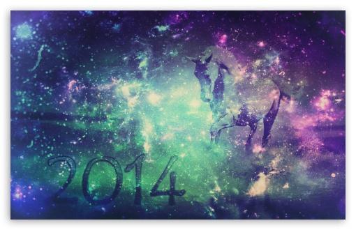 Download Horse 2014 UltraHD Wallpaper