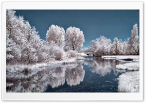 White Scenery
