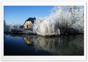 Farmhouse And Frosty Trees