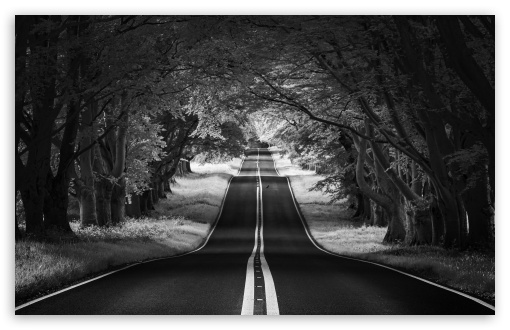 Download Road Landscape, Aesthetic, Black and White UltraHD Wallpaper