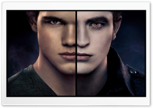 The Twilight Saga Breaking...