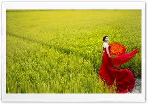 Romantic Lady In Red