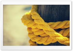 The Yellow Rope