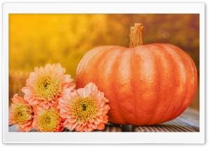 Autumn October Happy...