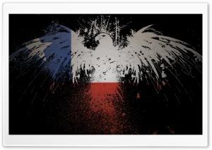 Flag Eagles Chile