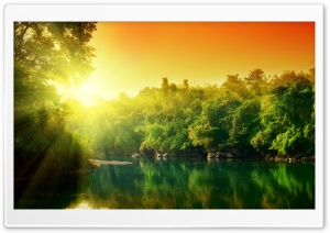 Lush Green Forest River At...